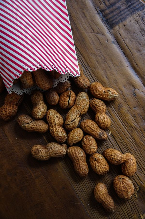 Wizard of Oz; Hot Roasted Peanuts