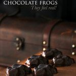 Harry Potter Honeydukes Chocolate Frogs | Food in Literature