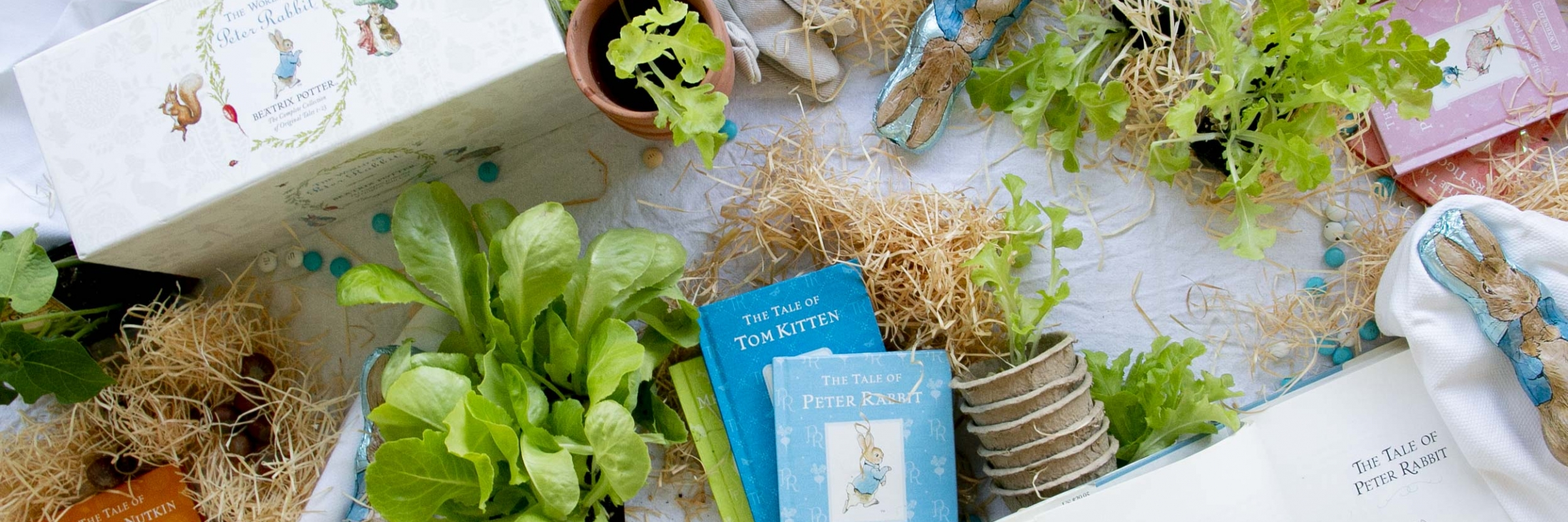 Peter Rabbit feature image